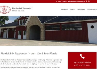Pferdeklinik Tappendorf